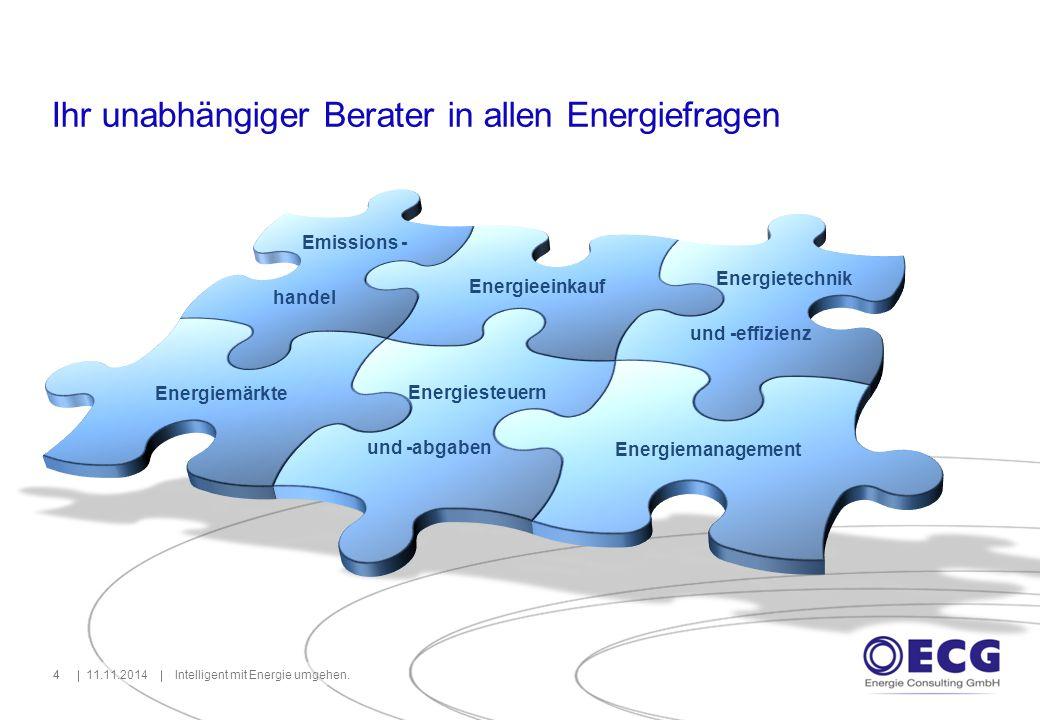 11.11.2014Intelligent mit Energie umgehen.44 Ihr unabhängiger Berater in allen Energiefragen