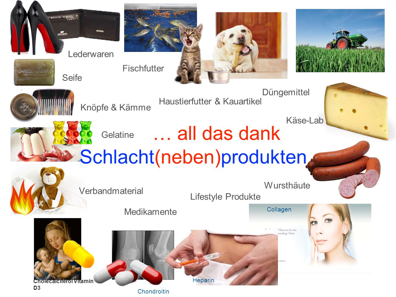 Fischfutter Käse-Lab Wursthäute Haustierfutter & Kauartikel Verbandmaterial Gelatine Knöpfe & Kämme Seife Collagen Lifestyle Produkte Lederwaren Dünge