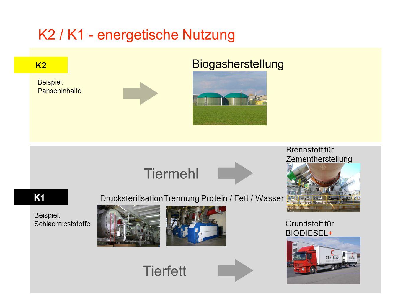 K2 K1 K2 / K1 - energetische Nutzung Beispiel: Panseninhalte Beispiel: Schlachtreststoffe Biogasherstellung Grundstoff für BIODIESEL+ Brennstoff für Z