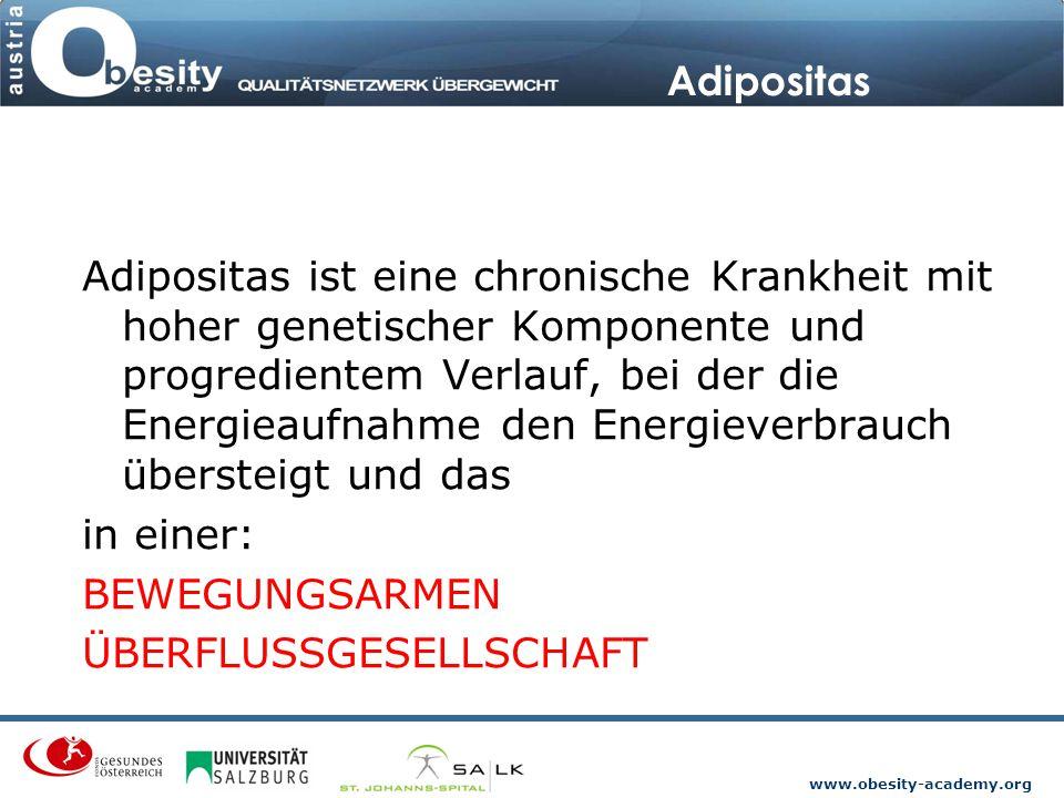 www.obesity-academy.org Ungesunde Ernährung Die Aufnahme an Kohlenhydraten liegt bei beiden Geschlechtern unterhalb des festgelegten Richtwertes (Ost- höher als in Westösterreich).