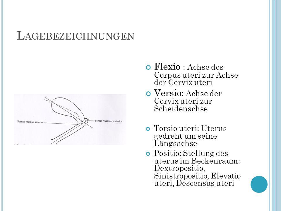 L AGEBEZEICHNUNGEN Flexio : Achse des Corpus uteri zur Achse der Cervix uteri Versio : Achse der Cervix uteri zur Scheidenachse Torsio uteri: Uterus g