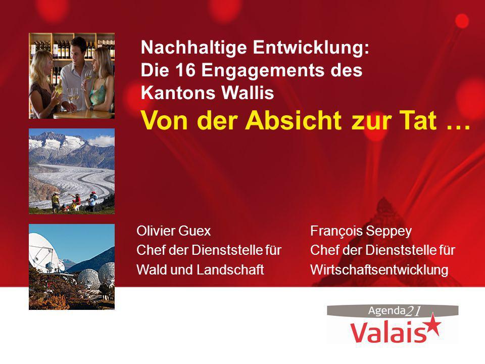 Nachhaltiger Tourismus Umsetzung: Dachmarke Wallis: –Schaffung einer einzigen Dachmarke für alle Wirtschaftssektoren –Unterstützung von Vorzeigeveranstaltungen, welche den Werten der Marke entsprechen.