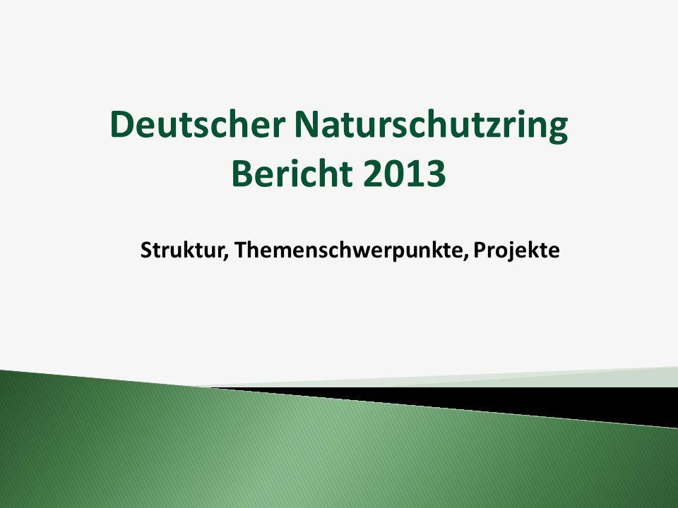 Deutscher Naturschutzring Bericht 2013 Struktur, Themenschwerpunkte, Projekte