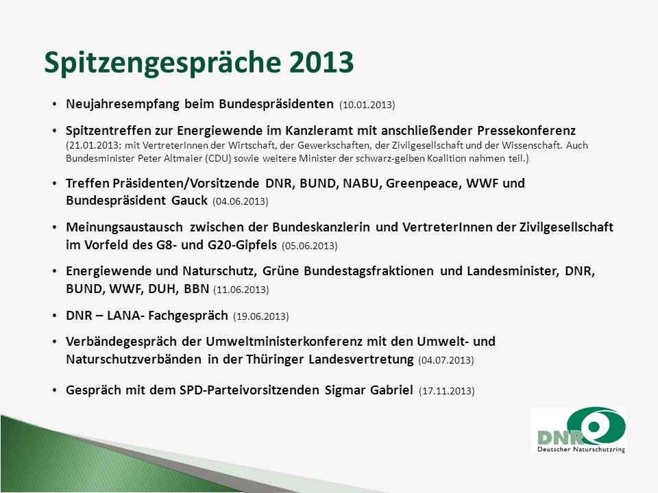 Spitzengespräche 2013 Neujahresempfang beim Bundespräsidenten (10.01.2013) Spitzentreffen zur Energiewende im Kanzleramt mit anschließender Pressekonf