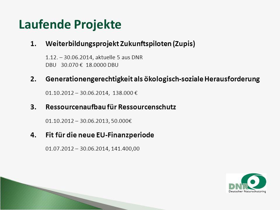 Laufende Projekte 1. Weiterbildungsprojekt Zukunftspiloten (Zupis) 1.12. – 30.06.2014, aktuelle 5 aus DNR DBU 30.070 € 18.0000 DBU 2. Generationengere