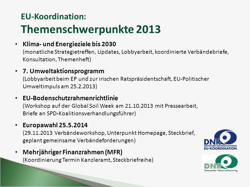 EU-Koordination: Themenschwerpunkte 2013 Klima- und Energieziele bis 2030 (monatliche Strategietreffen, Updates, Lobbyarbeit, koordinierte Verbändebri