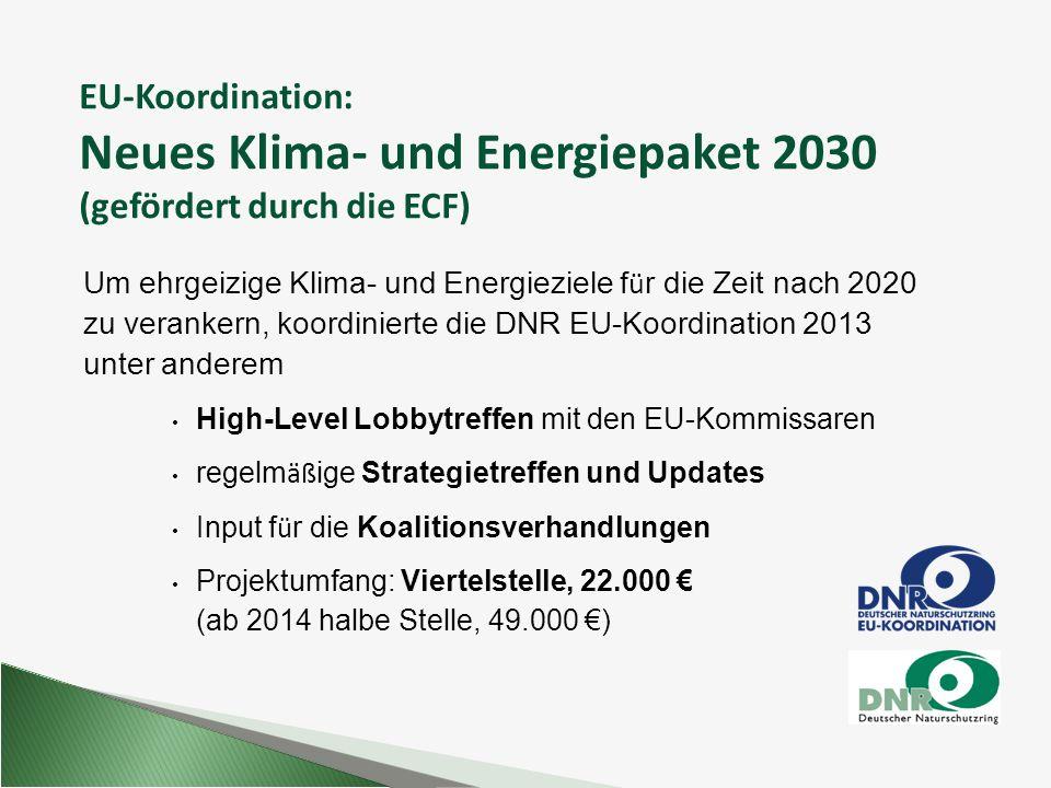 EU-Koordination: Neues Klima- und Energiepaket 2030 (gefördert durch die ECF) Um ehrgeizige Klima- und Energieziele f ü r die Zeit nach 2020 zu verank