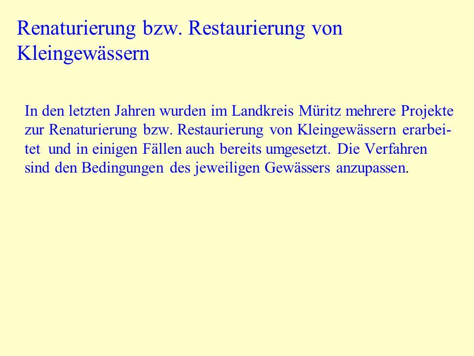 Renaturierung bzw. Restaurierung von Kleingewässern In den letzten Jahren wurden im Landkreis Müritz mehrere Projekte zur Renaturierung bzw. Restaurie