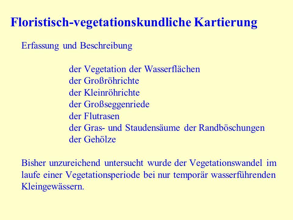 Floristisch-vegetationskundliche Kartierung Erfassung und Beschreibung der Vegetation der Wasserflächen der Großröhrichte der Kleinröhrichte der Großs