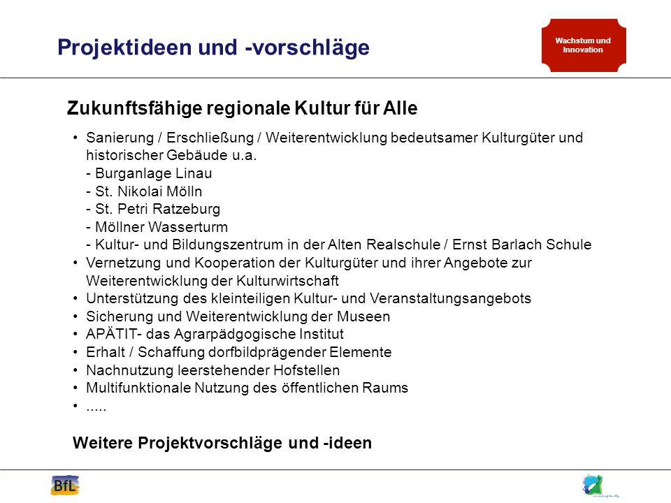 Projektideen und -vorschläge Wachstum und Innovation Zukunftsfähige regionale Kultur für Alle Sanierung / Erschließung / Weiterentwicklung bedeutsamer