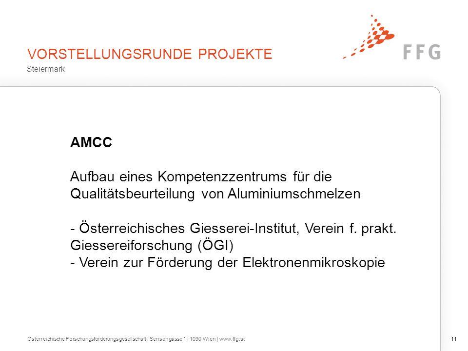 VORSTELLUNGSRUNDE PROJEKTE AMCC Aufbau eines Kompetenzzentrums für die Qualitätsbeurteilung von Aluminiumschmelzen - Österreichisches Giesserei-Instit