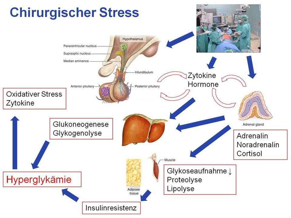 7 Metabolische Veränderungen Thorell A, Curr Opin Clin Nutr.