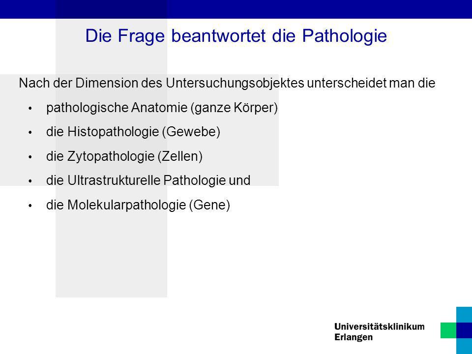Nach der Dimension des Untersuchungsobjektes unterscheidet man die pathologische Anatomie (ganze Körper) die Histopathologie (Gewebe) die Zytopatholog