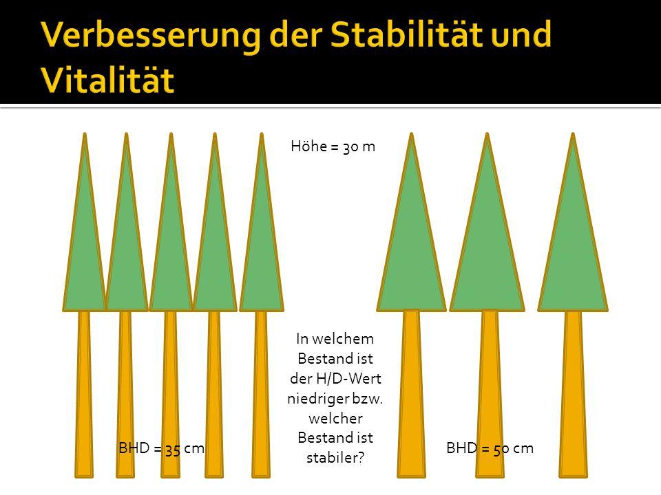 Höhe = 30 m BHD = 50 cmBHD = 35 cm In welchem Bestand ist der H/D-Wert niedriger bzw. welcher Bestand ist stabiler?