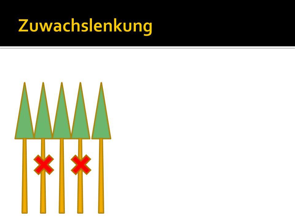 Kronenlänge = Baumhöhe - Kronenansatzhöhe Kronenprozent = Kronenlänge / Baumhöhe x 100 %