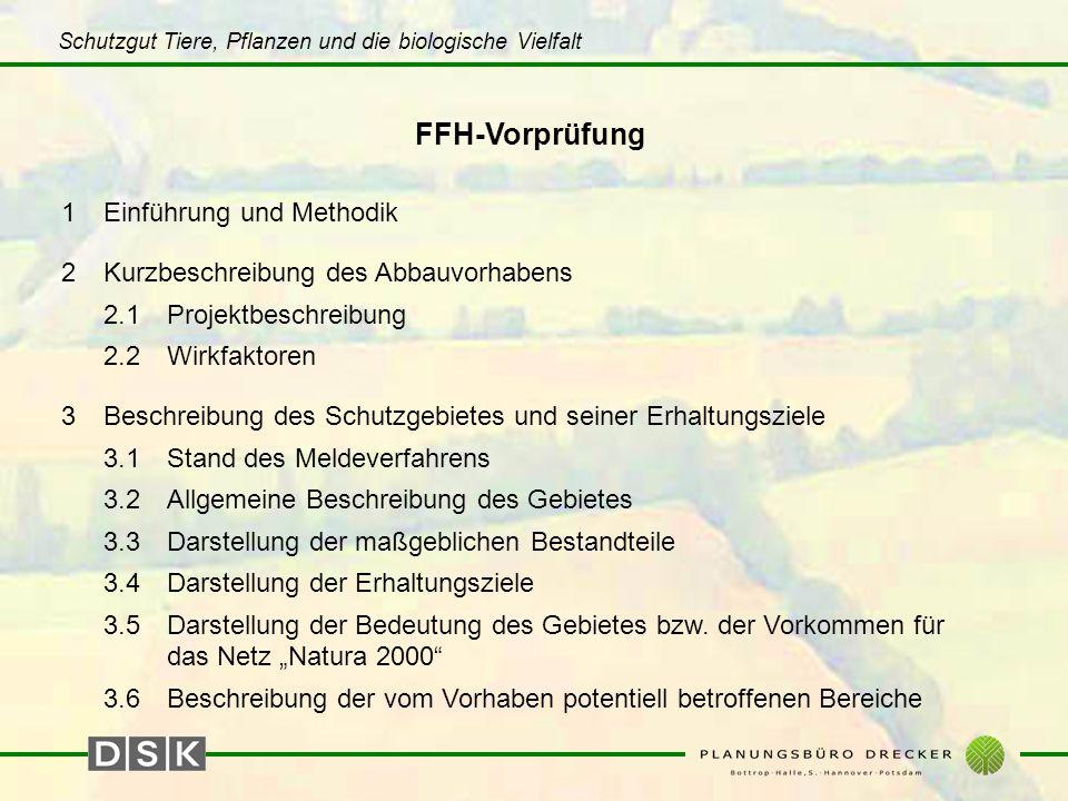 Schutzgut Tiere, Pflanzen und die biologische Vielfalt FFH-Vorprüfung 1Einführung und Methodik 2Kurzbeschreibung des Abbauvorhabens 2.1Projektbeschrei