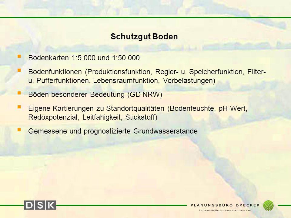 Schutzgut Boden  Bodenkarten 1:5.000 und 1:50.000  Bodenfunktionen (Produktionsfunktion, Regler- u. Speicherfunktion, Filter- u. Pufferfunktionen, L