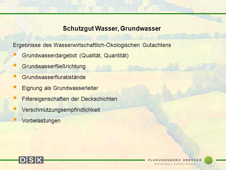 Schutzgut Wasser, Grundwasser Ergebnisse des Wasserwirtschaftlich-Ökologischen Gutachtens  Grundwasserdargebot (Qualität, Quantität)  Grundwasserfli