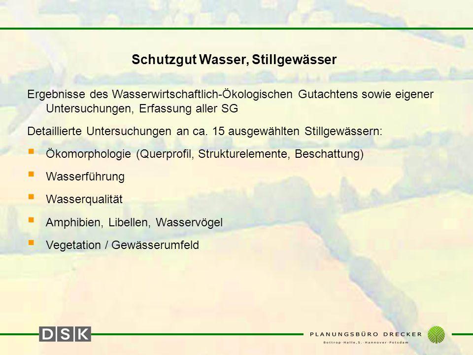 Schutzgut Wasser, Stillgewässer Ergebnisse des Wasserwirtschaftlich-Ökologischen Gutachtens sowie eigener Untersuchungen, Erfassung aller SG Detaillierte Untersuchungen an ca.