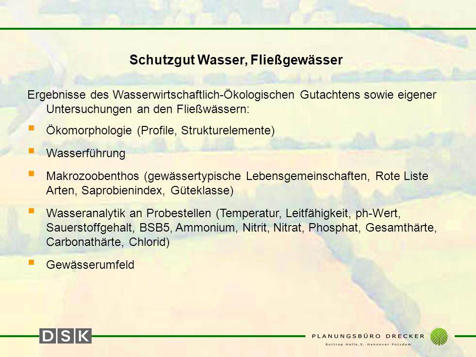 Schutzgut Wasser, Fließgewässer Ergebnisse des Wasserwirtschaftlich-Ökologischen Gutachtens sowie eigener Untersuchungen an den Fließwässern:  Ökomor