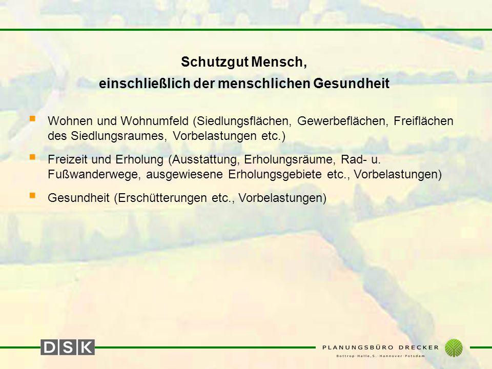 Schutzgüter Klima u.Luft  Mesoklima u. Geländeklima (Luftleitbahnen, Austauschgebiete etc.