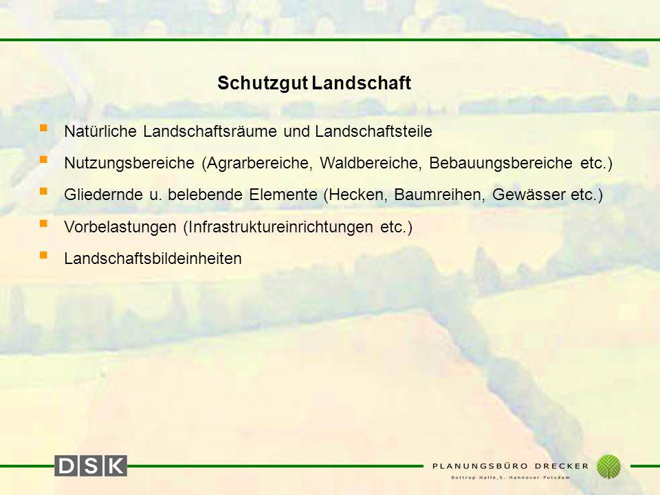 Schutzgut Tiere, Pflanzen und die biologische Vielfalt  Biotoptypen (Kartierschlüssel der LÖBF, Bewertung nach ARGE EINGRIFF-AUSGLEICH-NRW (1996)  Geschützte und schutzwürdige Bereiche (Regionalplanerische Darstellungen, NSG, LSG, ND, LB, § 62-Biotope etc.)  Repräsentative Vegetations- und Bodenaufnahmen an ausgewählten Probestellen nach der Methode DAHMEN (1996), bzw.