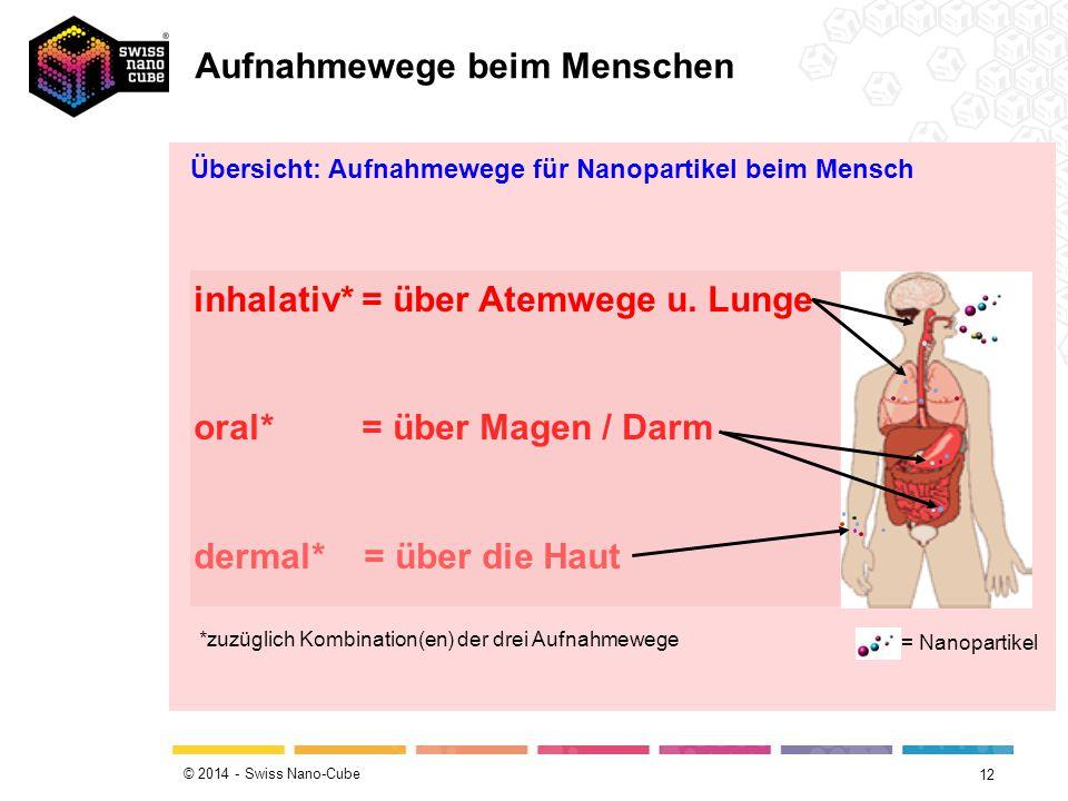 © 2014 - Swiss Nano-Cube 12 Übersicht: Aufnahmewege für Nanopartikel beim Mensch inhalativ* = über Atemwege u. Lunge oral* = über Magen / Darm dermal*