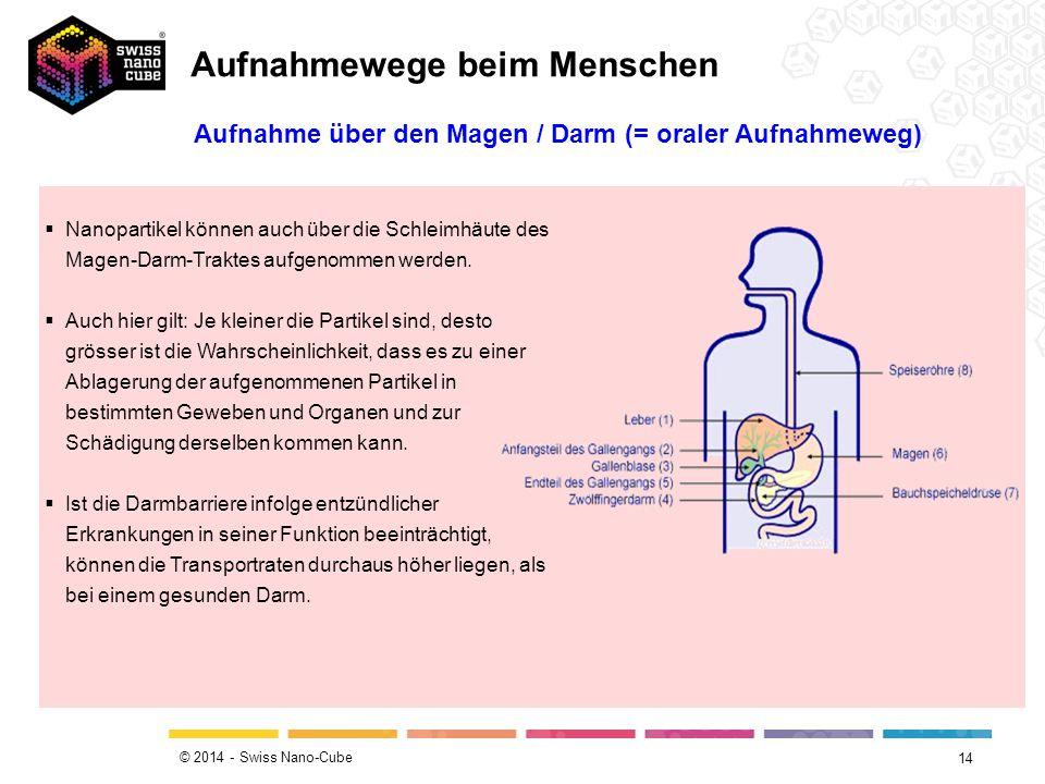 © 2014 - Swiss Nano-Cube 14 Aufnahme über den Magen / Darm (= oraler Aufnahmeweg)  Nanopartikel können auch über die Schleimhäute des Magen-Darm-Traktes aufgenommen werden.