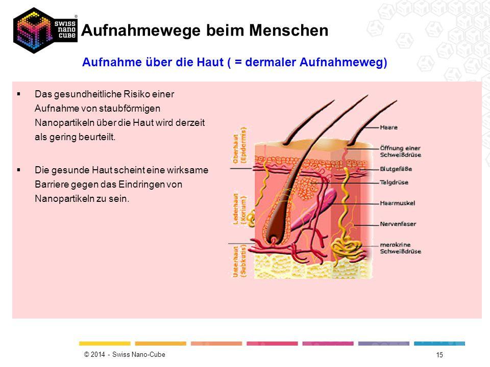 © 2014 - Swiss Nano-Cube 15 Aufnahme über die Haut ( = dermaler Aufnahmeweg)  Das gesundheitliche Risiko einer Aufnahme von staubförmigen Nanopartike