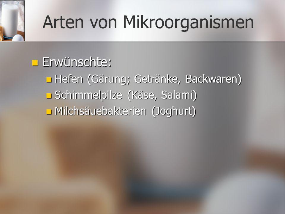 Arten von Mikroorganismen Erwünschte: Erwünschte: Hefen (Gärung; Getränke, Backwaren) Hefen (Gärung; Getränke, Backwaren) Schimmelpilze (Käse, Salami) Schimmelpilze (Käse, Salami) Milchsäuebakterien (Joghurt) Milchsäuebakterien (Joghurt)