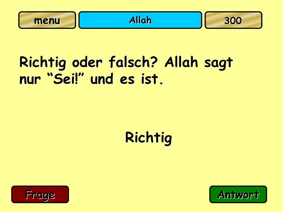 """Allah Richtig oder falsch? Allah sagt nur """"Sei!"""" und es ist. Richtig FrageAntwort 300"""