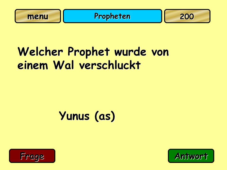 Propheten Welcher Prophet wurde von einem Wal verschluckt Yunus (as) FrageAntwort 200