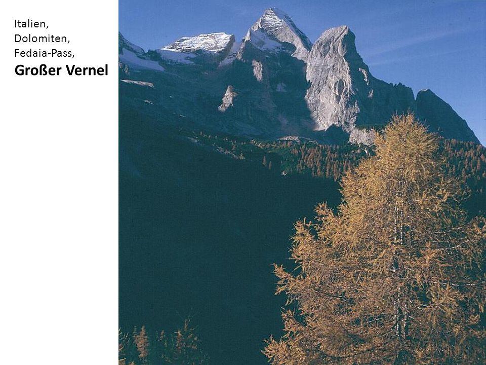 Schweiz, Berner Oberland, Bachalpsee, Schreckhorn, Finsteraar- horn