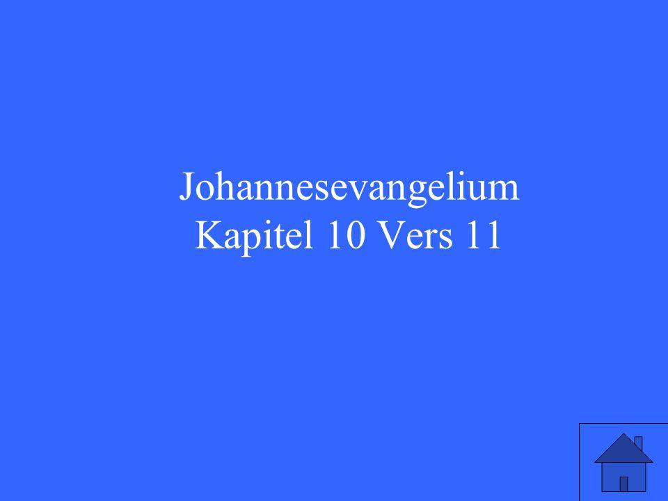 Johannesevangelium Kapitel 10 Vers 11