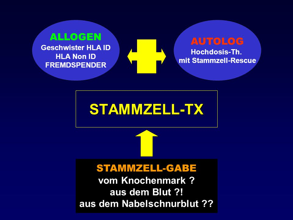 AUTOLOGE STAMMZELL - TRANSPLANTATION : GESUNDES SPENDERMARK KEIN STAMMZELLVERLUST GRAFT vs.