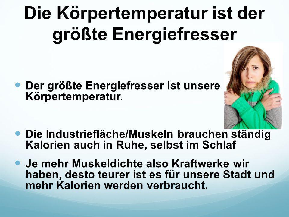 Die Körpertemperatur ist der größte Energiefresser Der größte Energiefresser ist unsere Körpertemperatur. Die Industriefläche/Muskeln brauchen ständig