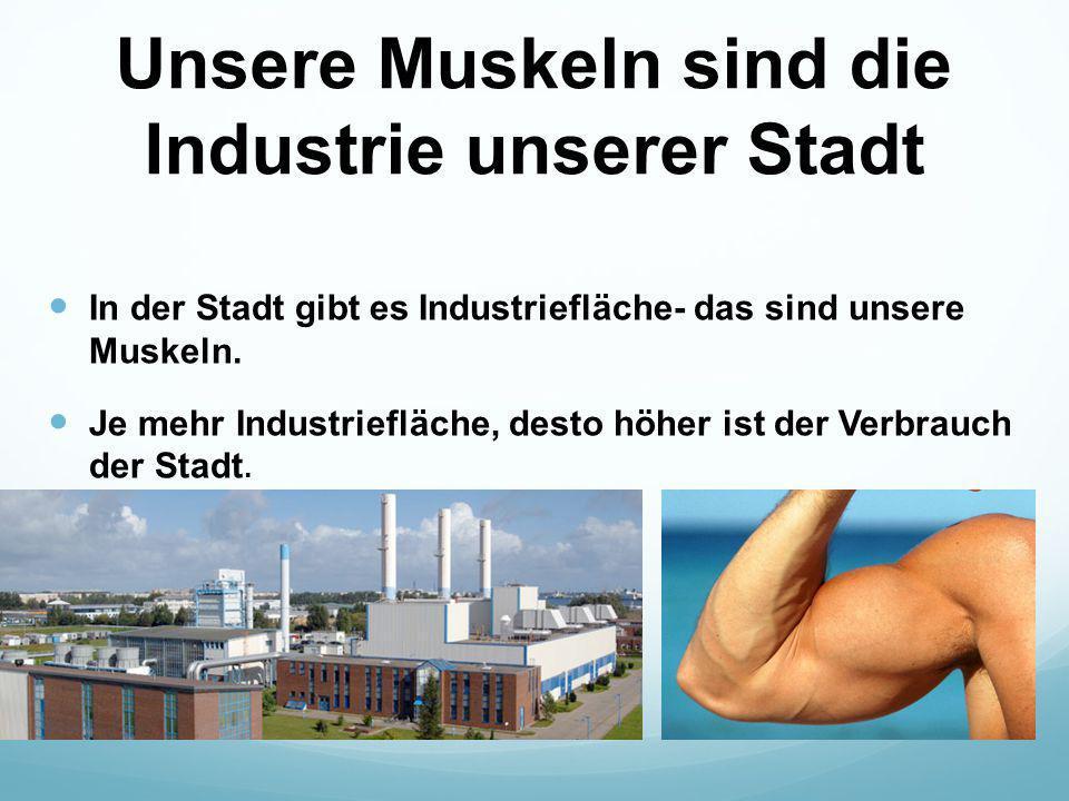 Unsere Muskeln sind die Industrie unserer Stadt In der Stadt gibt es Industriefläche- das sind unsere Muskeln. Je mehr Industriefläche, desto höher is