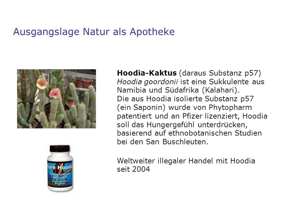 Hoodia-Kaktus (daraus Substanz p57) Hoodia goordonii ist eine Sukkulente aus Namibia und Südafrika (Kalahari). Die aus Hoodia isolierte Substanz p57 (