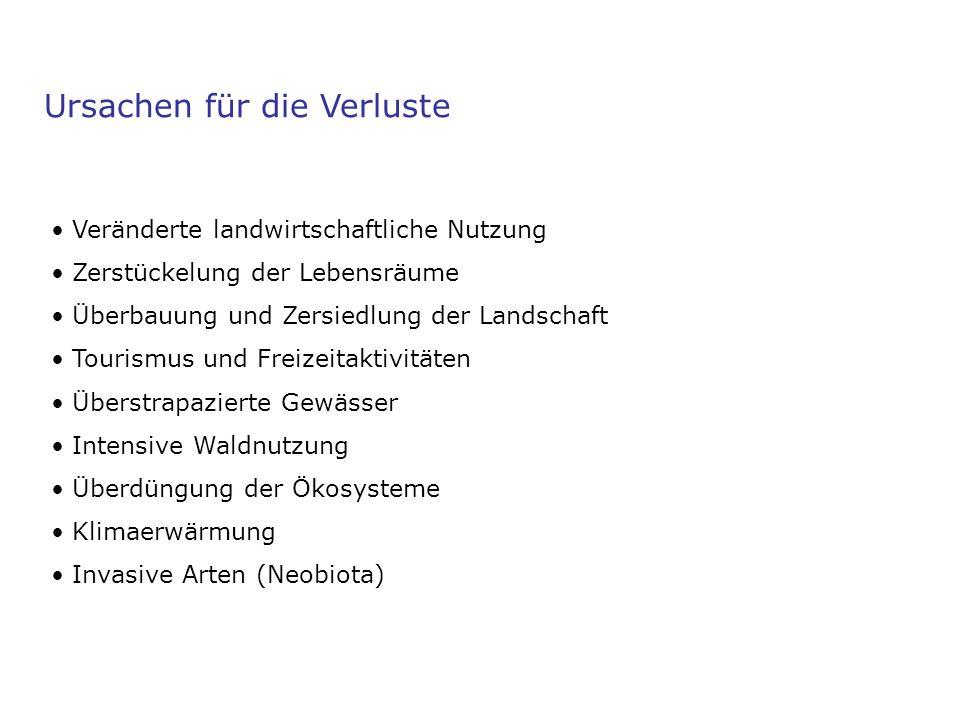 Schutzmassnahmen in der Schweiz Bundesgesetze und Verordnungen Rote Listen (Pflanzen und Tiere) Artenförderungsprogramme z.B.