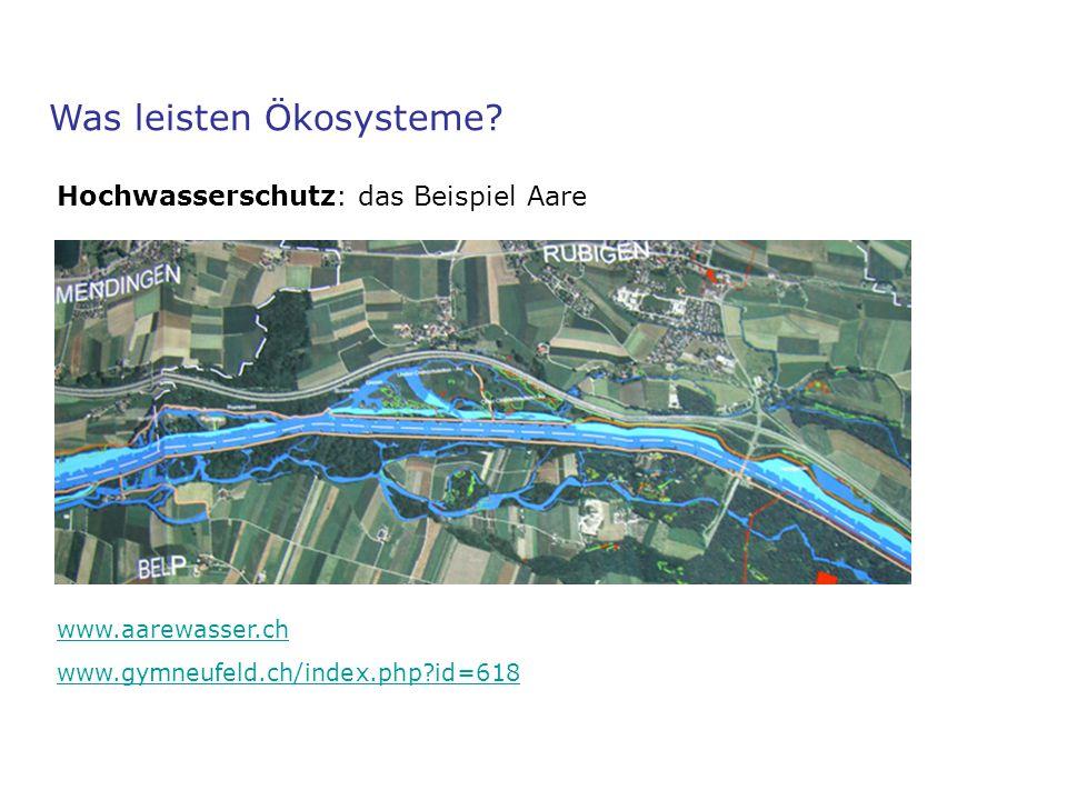 Was leisten Ökosysteme? Hochwasserschutz: das Beispiel Aare www.aarewasser.ch www.gymneufeld.ch/index.php?id=618