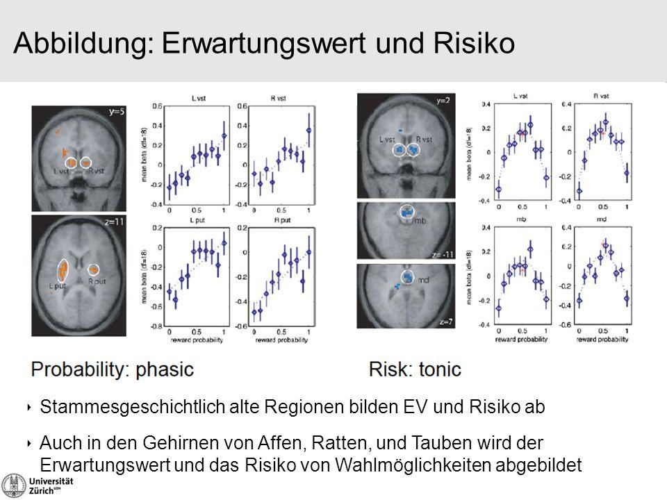 Abbildung: Erwartungswert und Risiko ‣ Stammesgeschichtlich alte Regionen bilden EV und Risiko ab ‣ Auch in den Gehirnen von Affen, Ratten, und Tauben