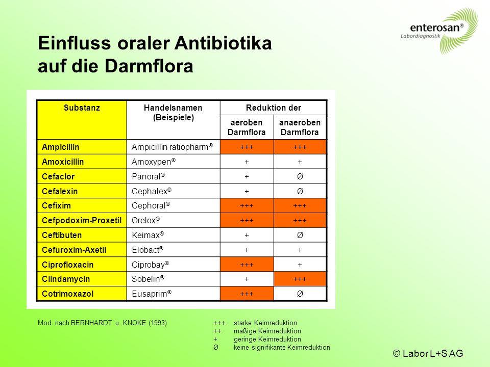 © Labor L+S AG SubstanzHandelsnamen (Beispiele) Reduktion der aeroben Darmflora anaeroben Darmflora AmpicillinAmpicillin ratiopharm ® +++ AmoxicillinA