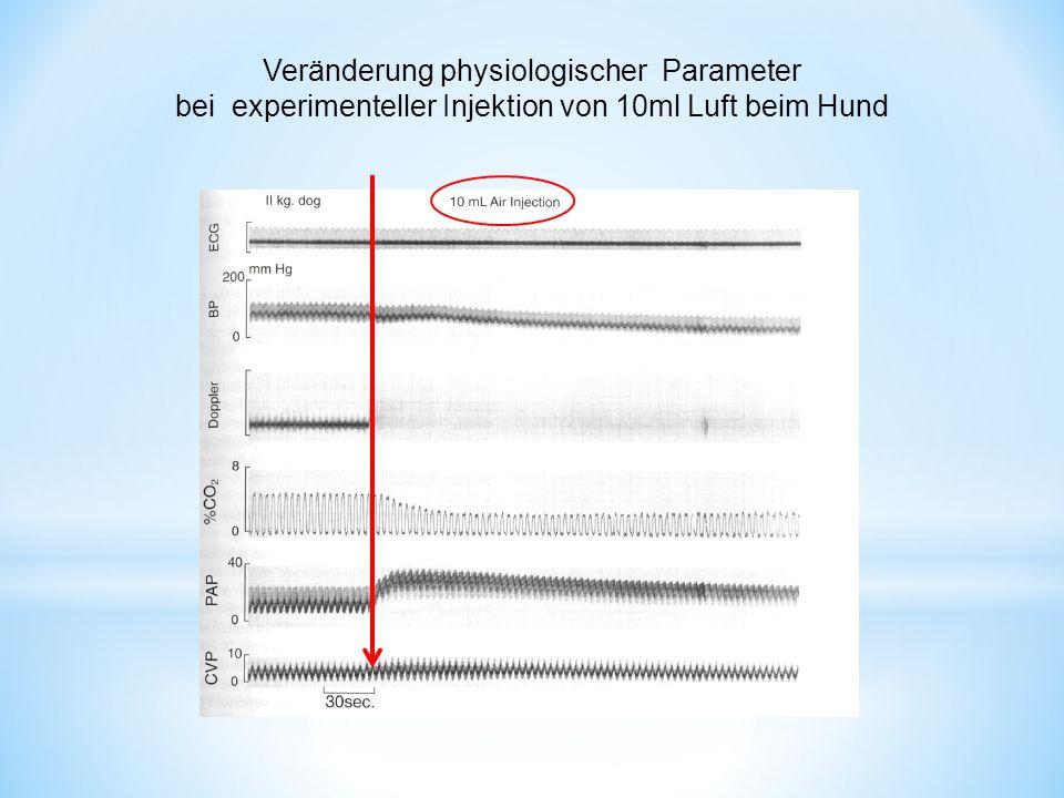 Veränderung physiologischer Parameter bei experimenteller Injektion von 10ml Luft beim Hund