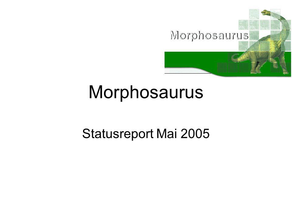 Morphosaurus Statusreport Mai 2005