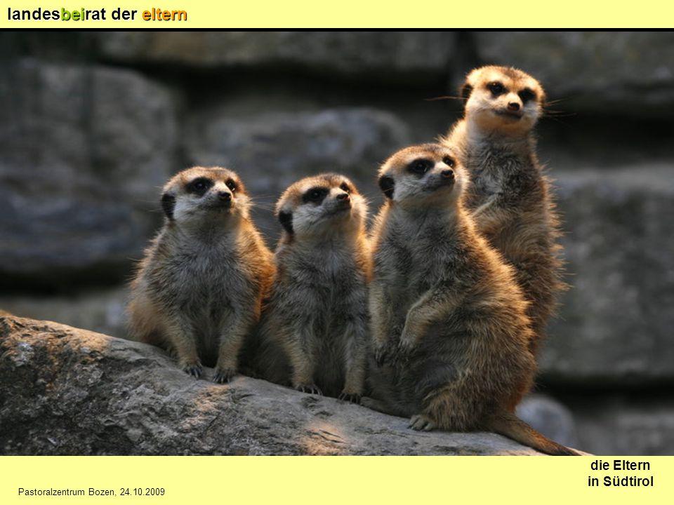 landesbeirat der eltern die Eltern in Südtirol Pastoralzentrum Bozen, 24.10.2009 Nachbesetzung der Bezirksvertreter