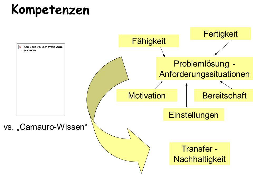 """Kompetenzen Problemlösung - Anforderungssituationen Fähigkeit Fertigkeit Motivation Einstellungen Bereitschaft Transfer - Nachhaltigkeit vs. """"Camauro-"""