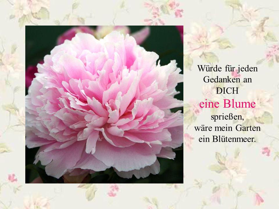 Lasse hin und wieder Blumen für dich sprechen