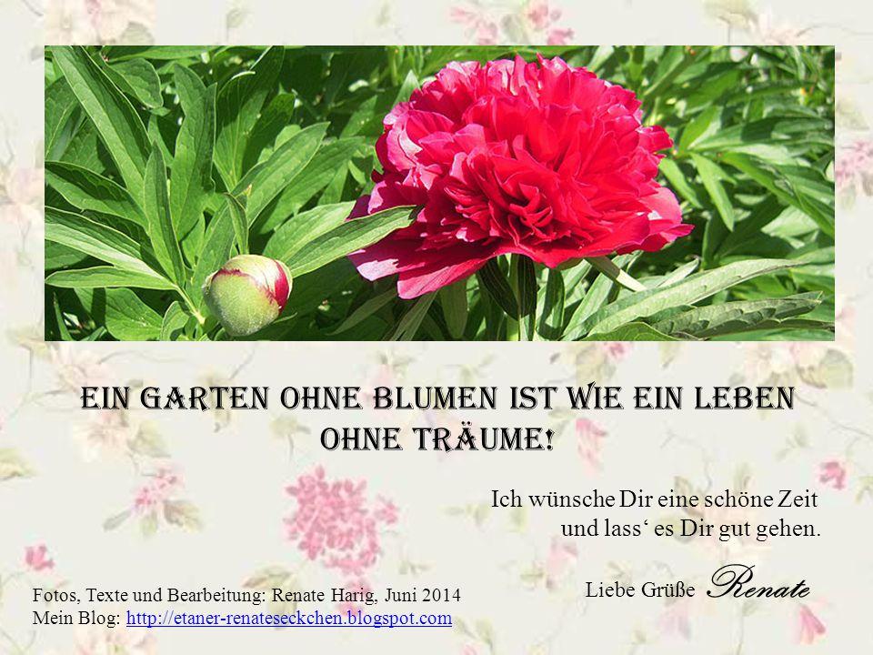 Würde für jeden Gedanken an DICH eine Blume sprießen, wäre mein Garten ein Blütenmeer.