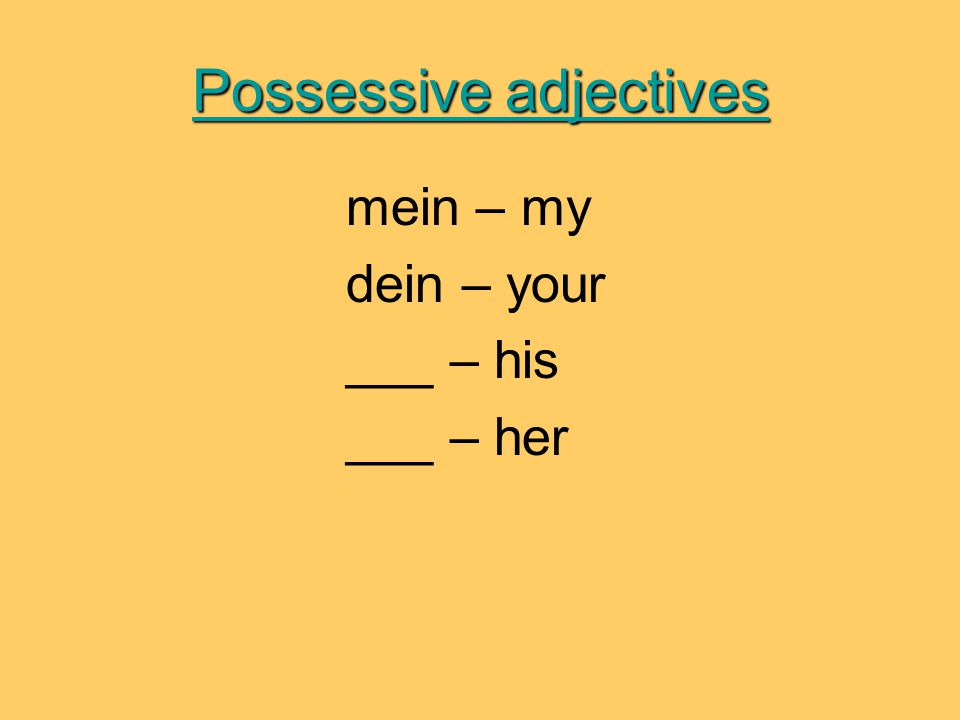 Possessive adjectives mein – my dein – your ___ – his ___ – her