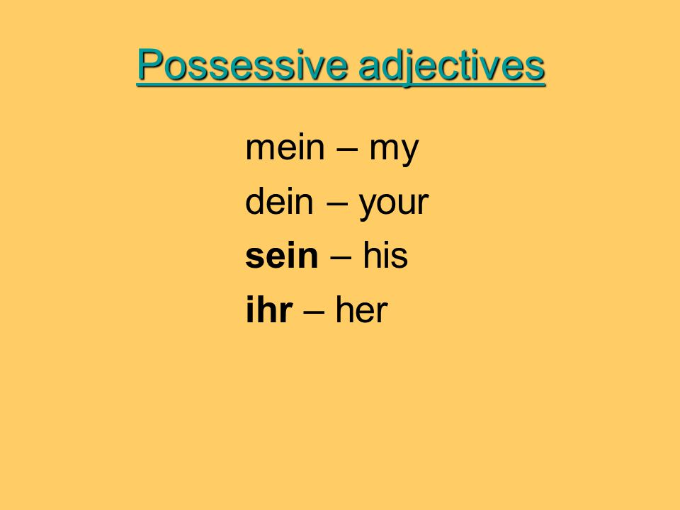 Possessive adjectives mein – my dein – your sein – his ihr – her